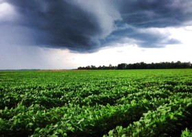 A storm rolling in over a soybean field in the Mississippi Delta. Photo © Delta Bohemian®