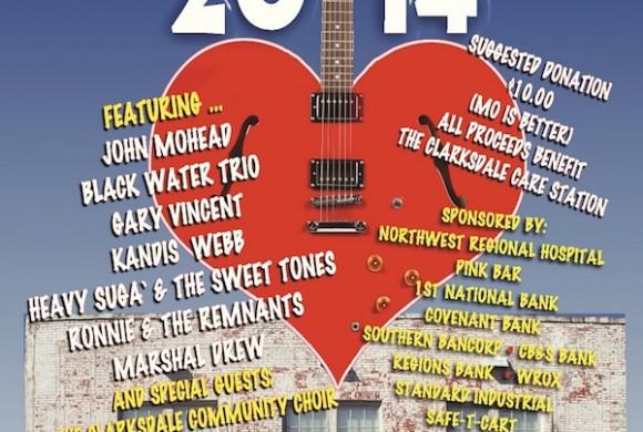 Care Fest 2014 Poster
